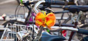 """Porta una """"bici in fiore"""" e ti rianimo il centro storico, nuova scommessa del Comitato commercianti Augusta"""